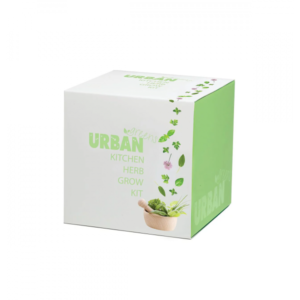 URBAN GREENS Grow Kit  Kitchen Herbs 10x10cm